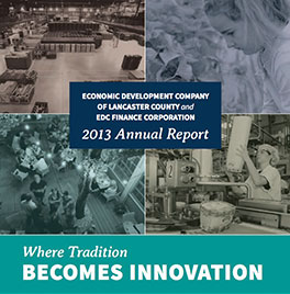 2013-AnnualReports